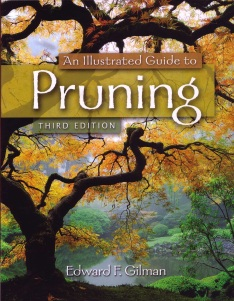 guide to pruning_gilman