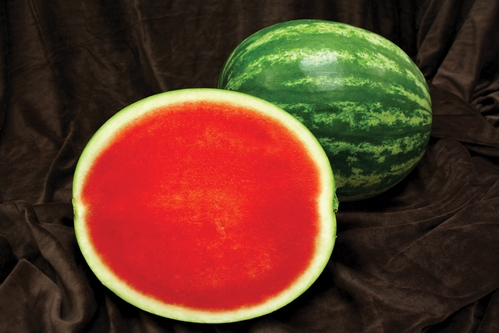 July Is National Watermelon Month on Color Number Fruit