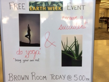 Do Yoga: receive a succulent